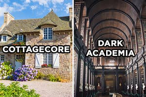 """On the left, a little cottage in the country with flowers all around it and """"Cottagecore"""" typed on top of it, and on the right, a grand, dark library with shelves upon shelves of books and """"Dark Academia"""" typed on top of it"""
