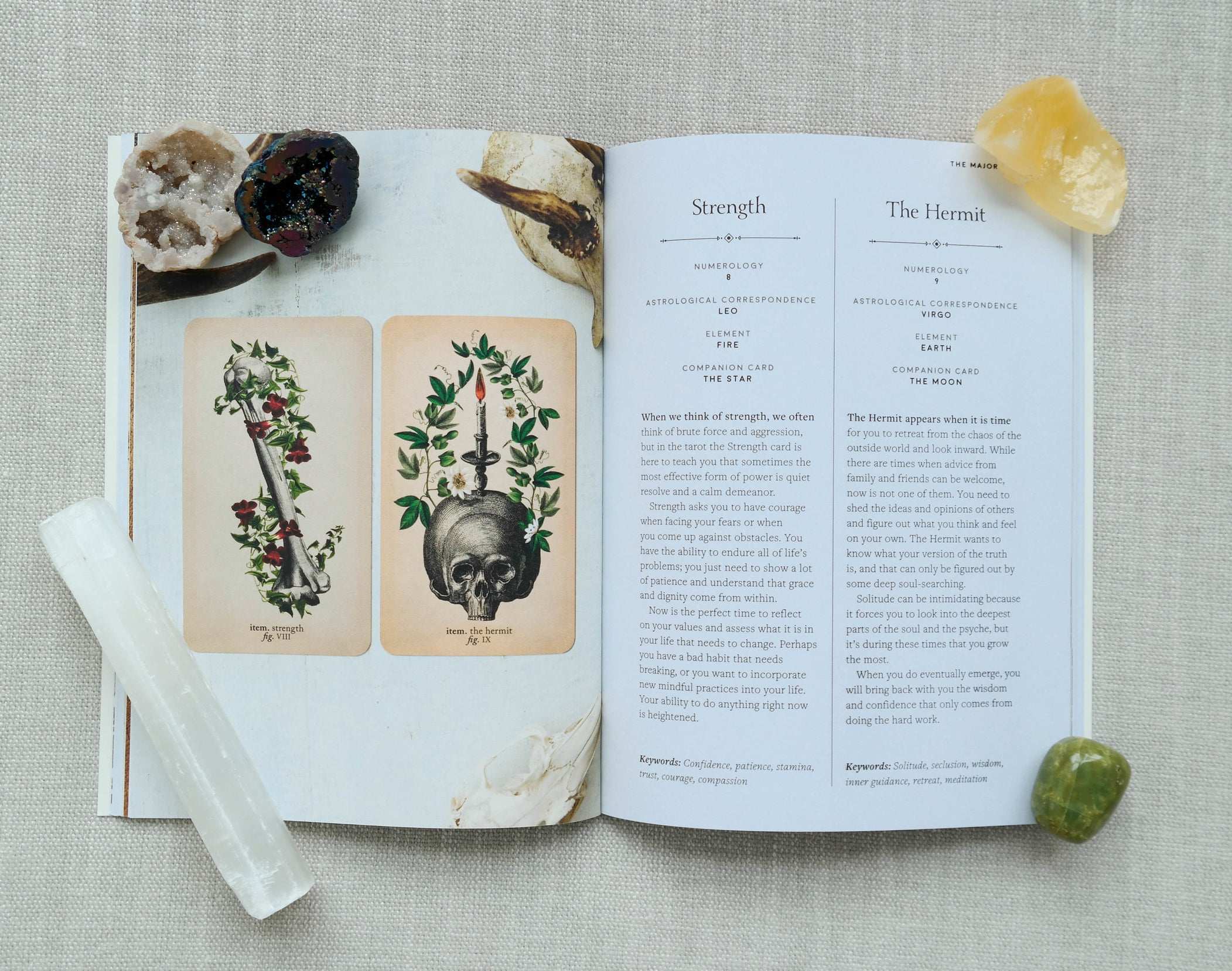 The guidebook for the Antique Anatomy deck lays open, showing the meanings for the strength and hermit cards
