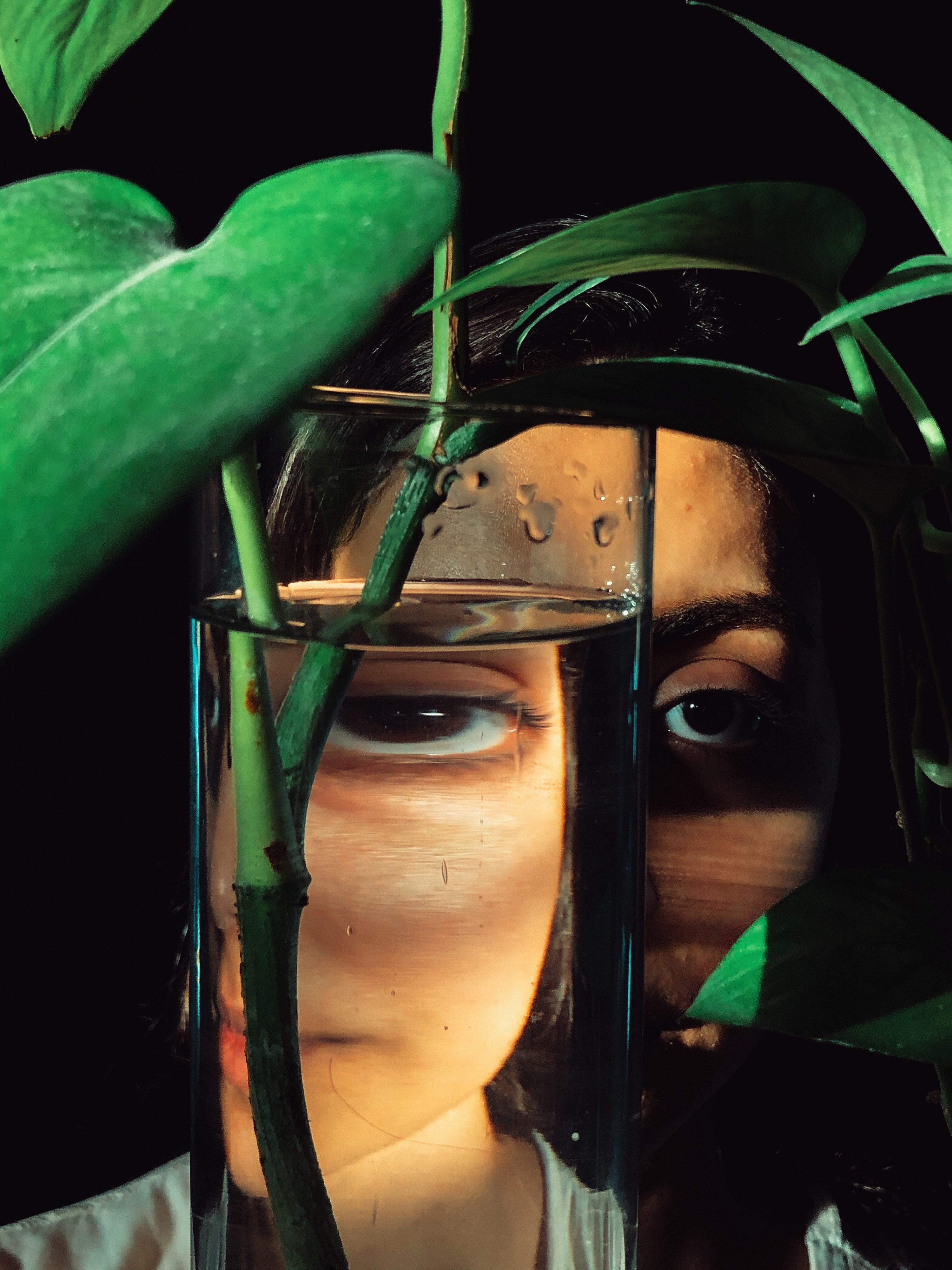 A face is seen through a vase with green leaves