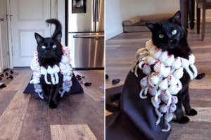 Cat modeling a dress of mouse toys
