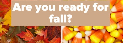 Autumn leaves and candy corn.