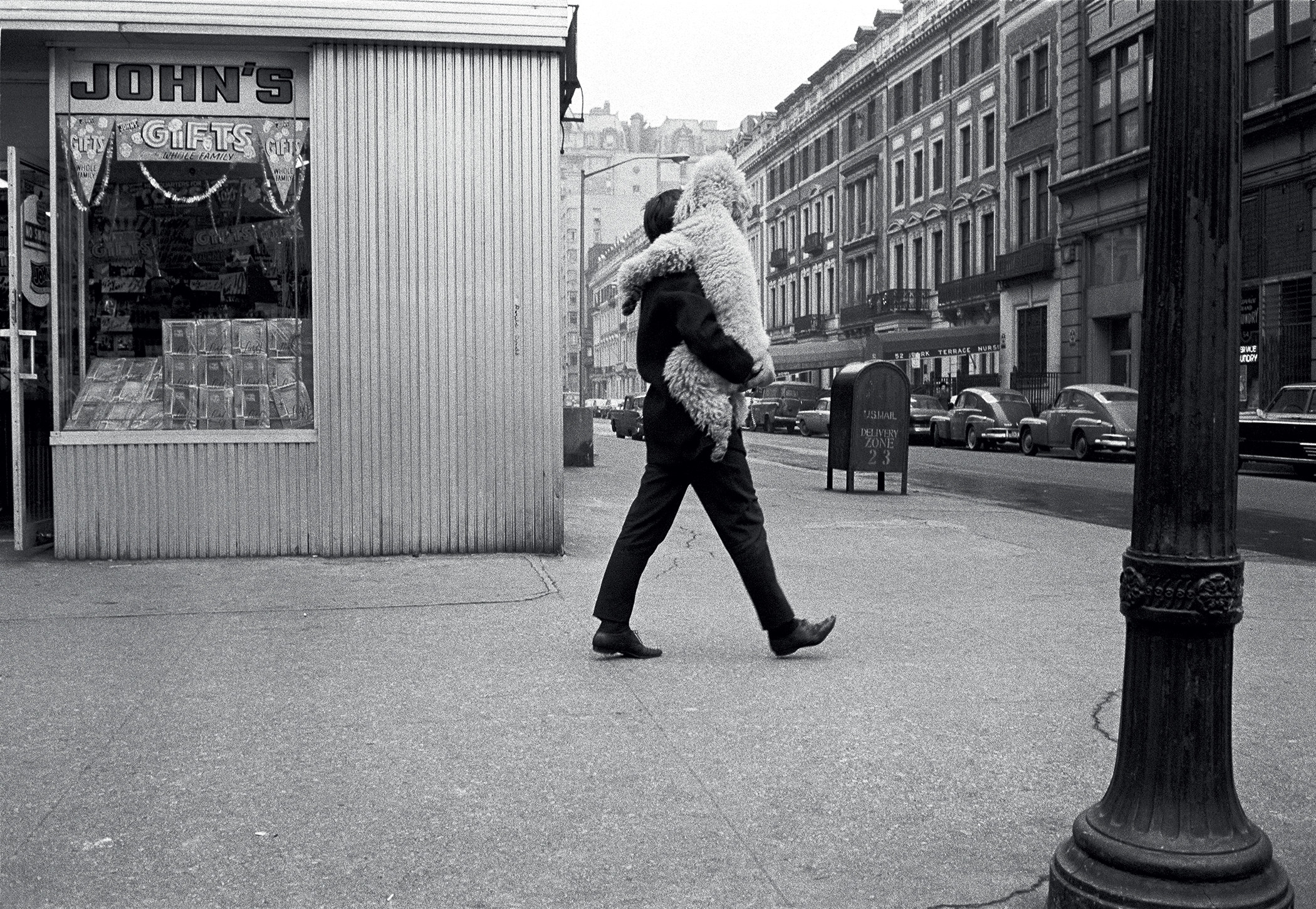 A man carries a large white dog on a city street