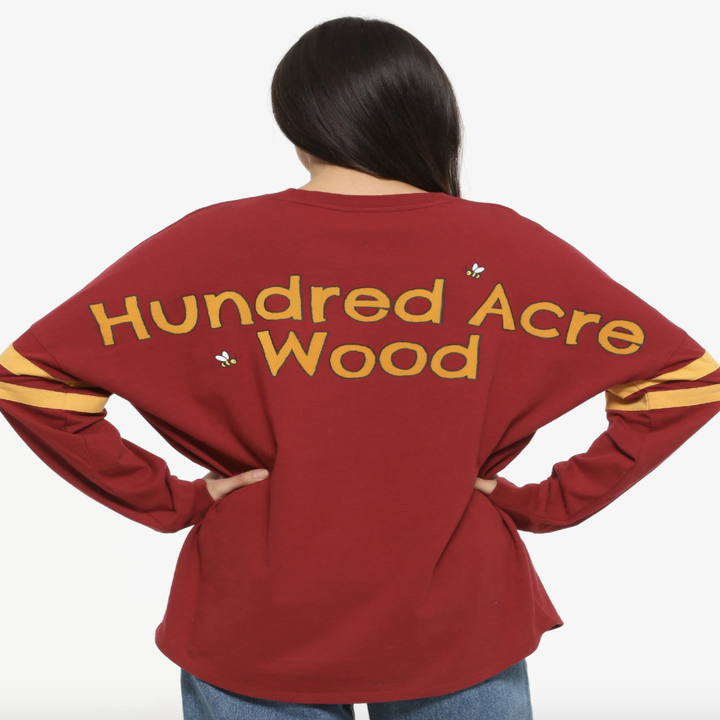 "the back of the shirt which says ""hundred acre wood"""