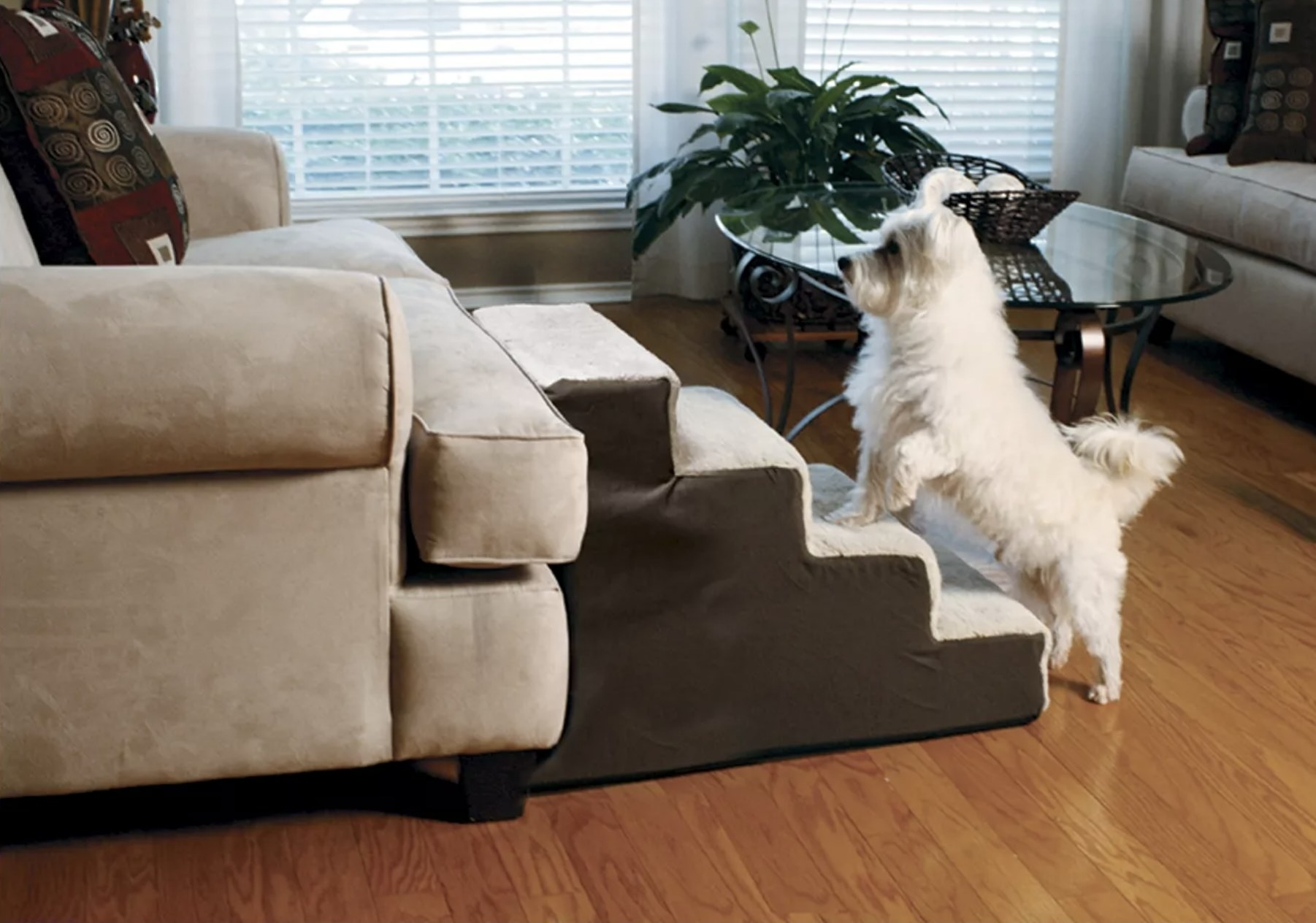 A dog using the soft cream-colored stairs to get up on a couch