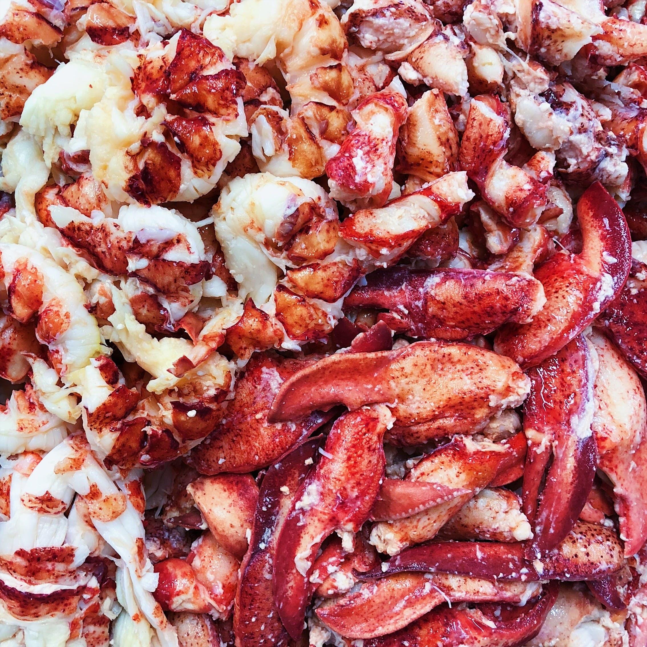 A huge portion of super fresh Maine lobster meat.