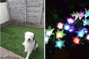 to the left: a sheepdog sitting on fake grass, to the right: glow in the dark flowers