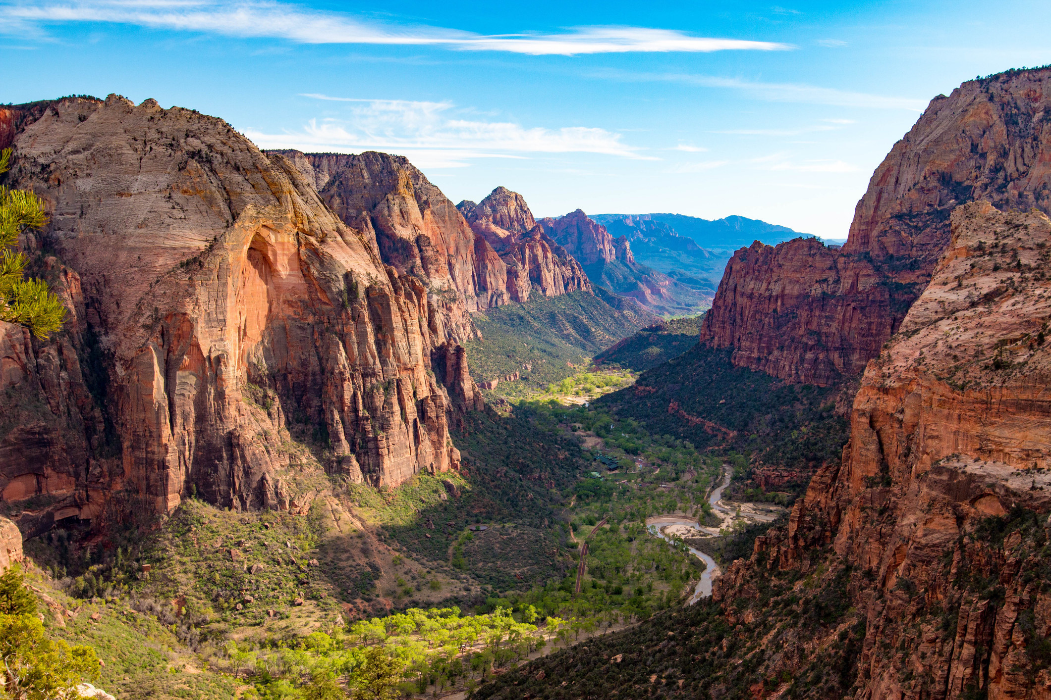 spectacular view from Angels Landing; a lush green valley is surrounded by rocky red mountains and cliffs