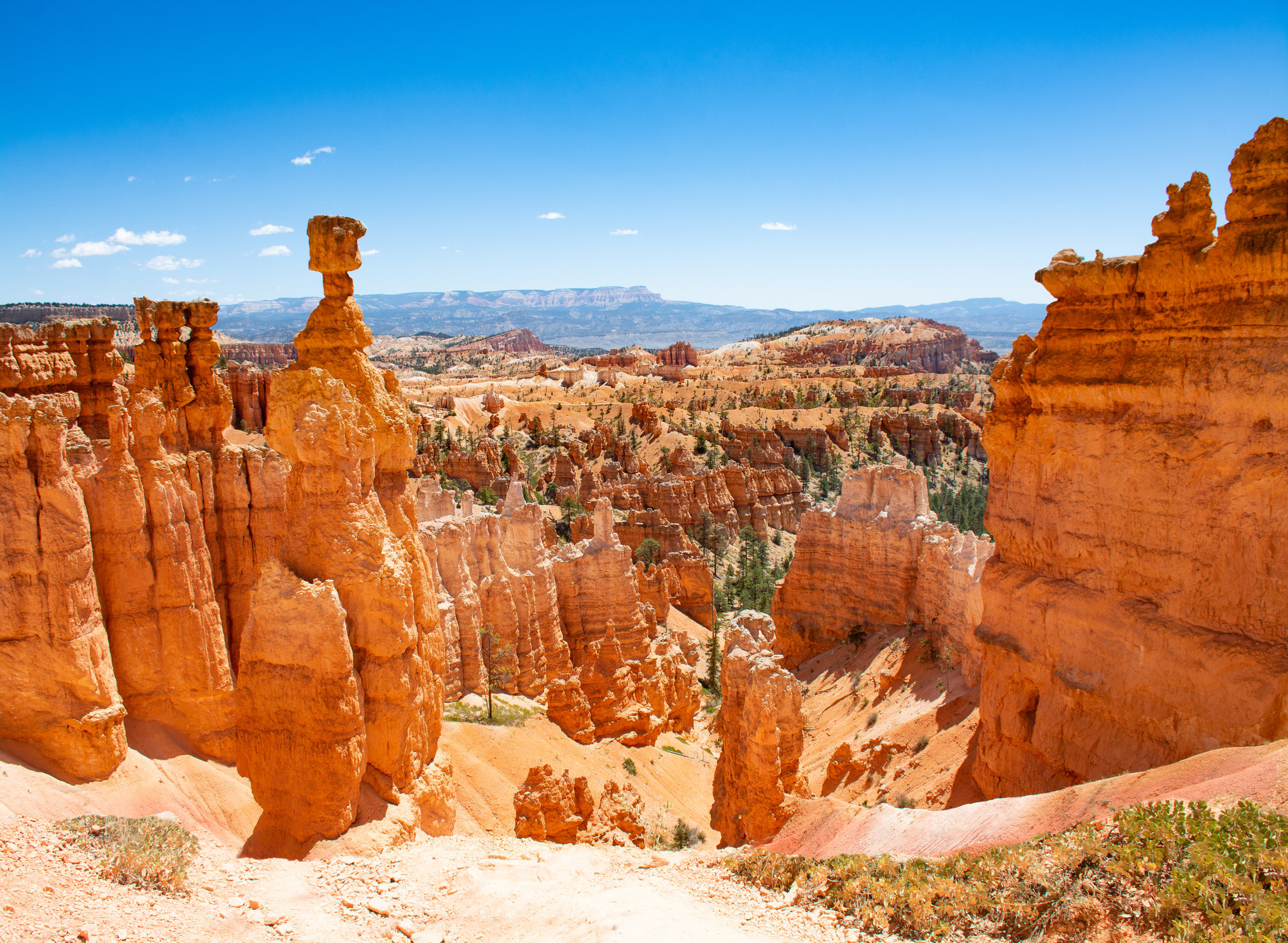 "Beautiful mountain landscape with tall ""hoodoos"" — tall red rock formations. one looks like Thor's Hammer"