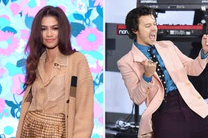 On the left, Zendaya smiles at the camera on the red carpet, and on the right, Harry Styles performs a song on the Today show