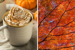 On the left, a pumpkin spice latte in a mug with whipped cream and cinnamon on top and a pumpkin in the background, and on the right, fall leaves in the sky