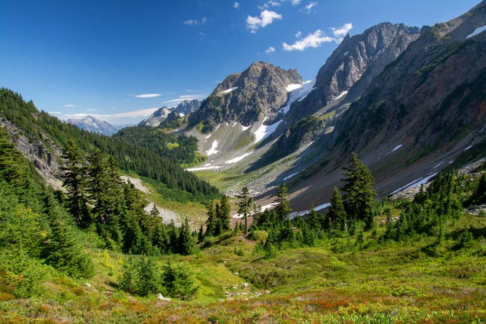 Snow-capped mountains surrounded by green meadows in North Cascades National Park.