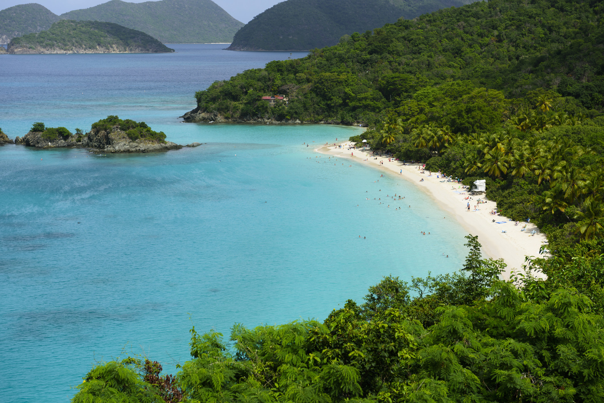 A blue crescent-shaped beach surrounded by lush palm trees in Virgin Islands National Park.