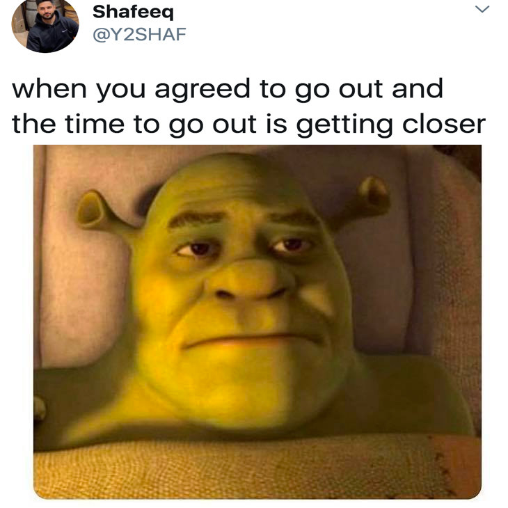"""Shrek looking sad with the caption """"when you agreed to go out and the time to go out is getting closer"""""""