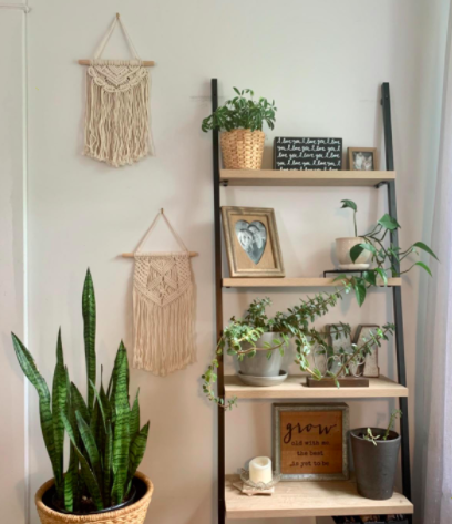 Reviewer's macrame wall art next to a ladder bookshelf with plants