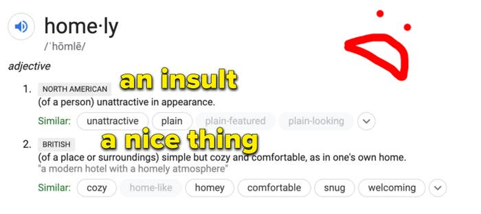 """A Google definition of the word """"homely"""" which says that the North American definition means """"unattractive"""" while the British definition means """"cozy and comfortable."""""""