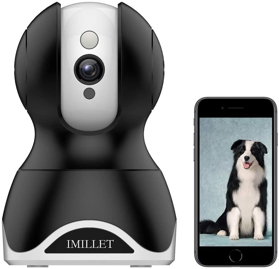 The IMILLET WiFi dog camera and a cell phone displaying a photo of a large Collie mix.