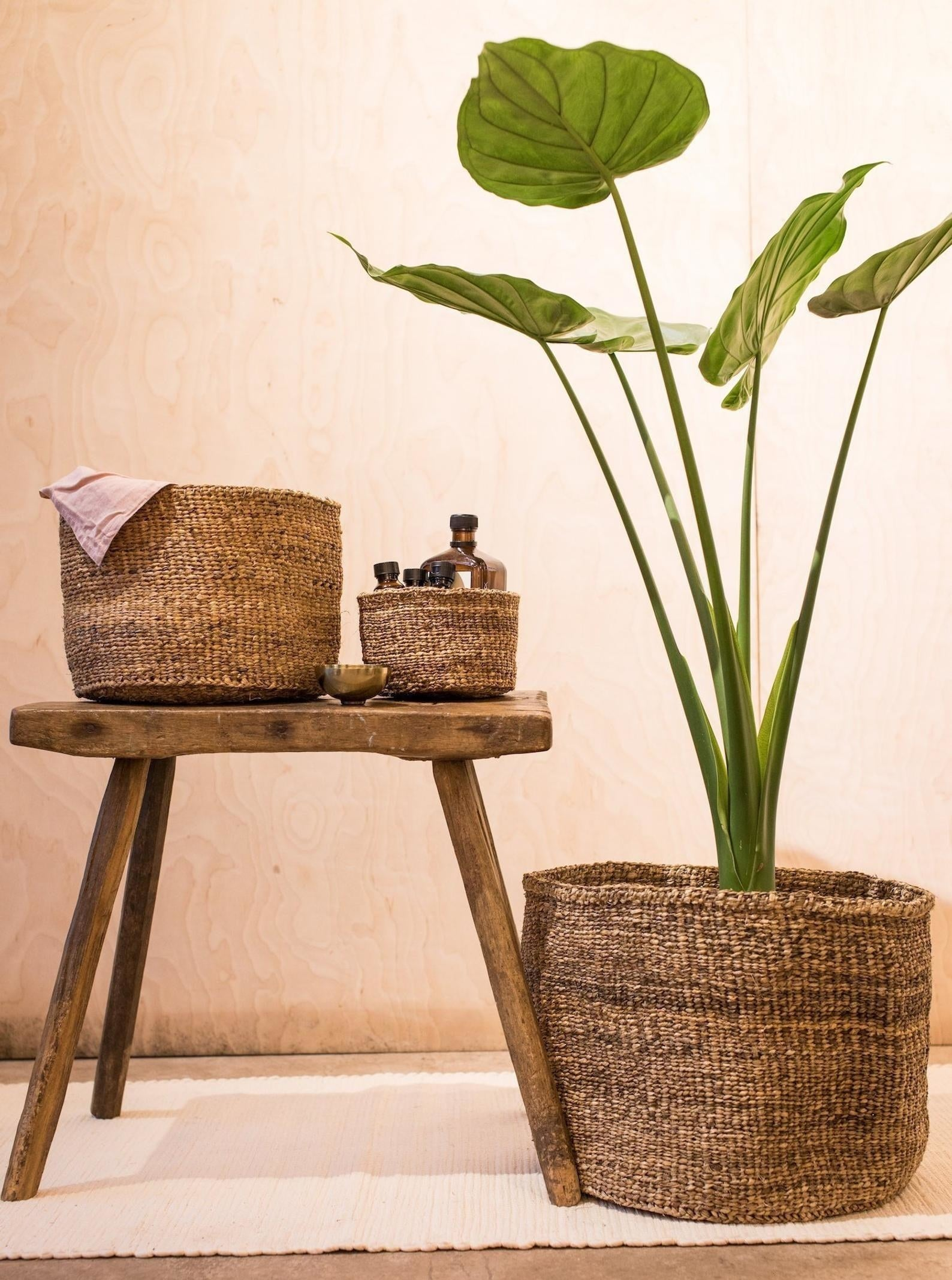 A large, woven brown planter made from banana tree bark holding a tall plant