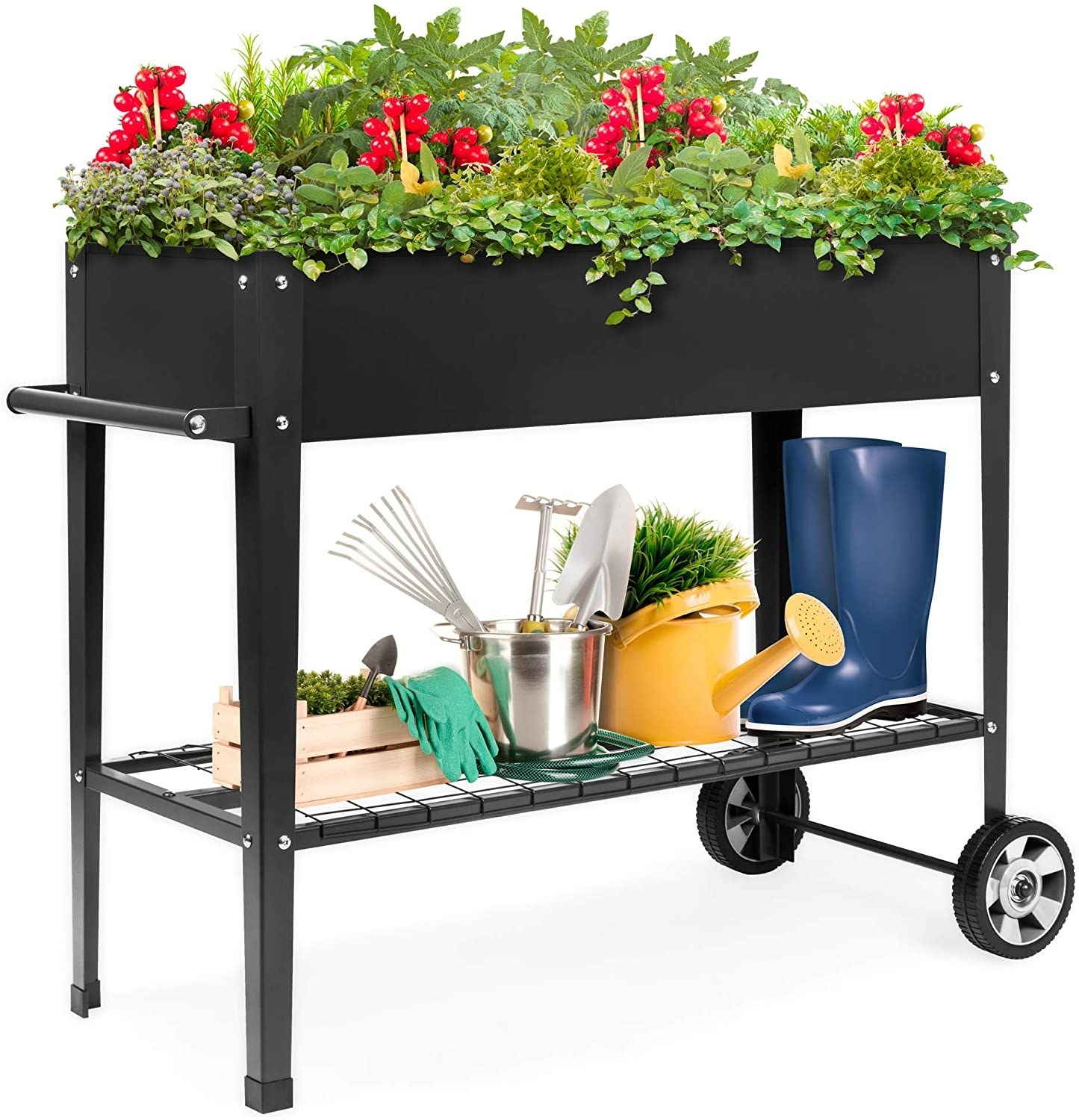 A black metal cart with two wheels, a ventilated storage shelf, and a bed full of plants