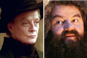 "McGonagall from ""Harry Potter"" is on the left while Hagrid is on the right"