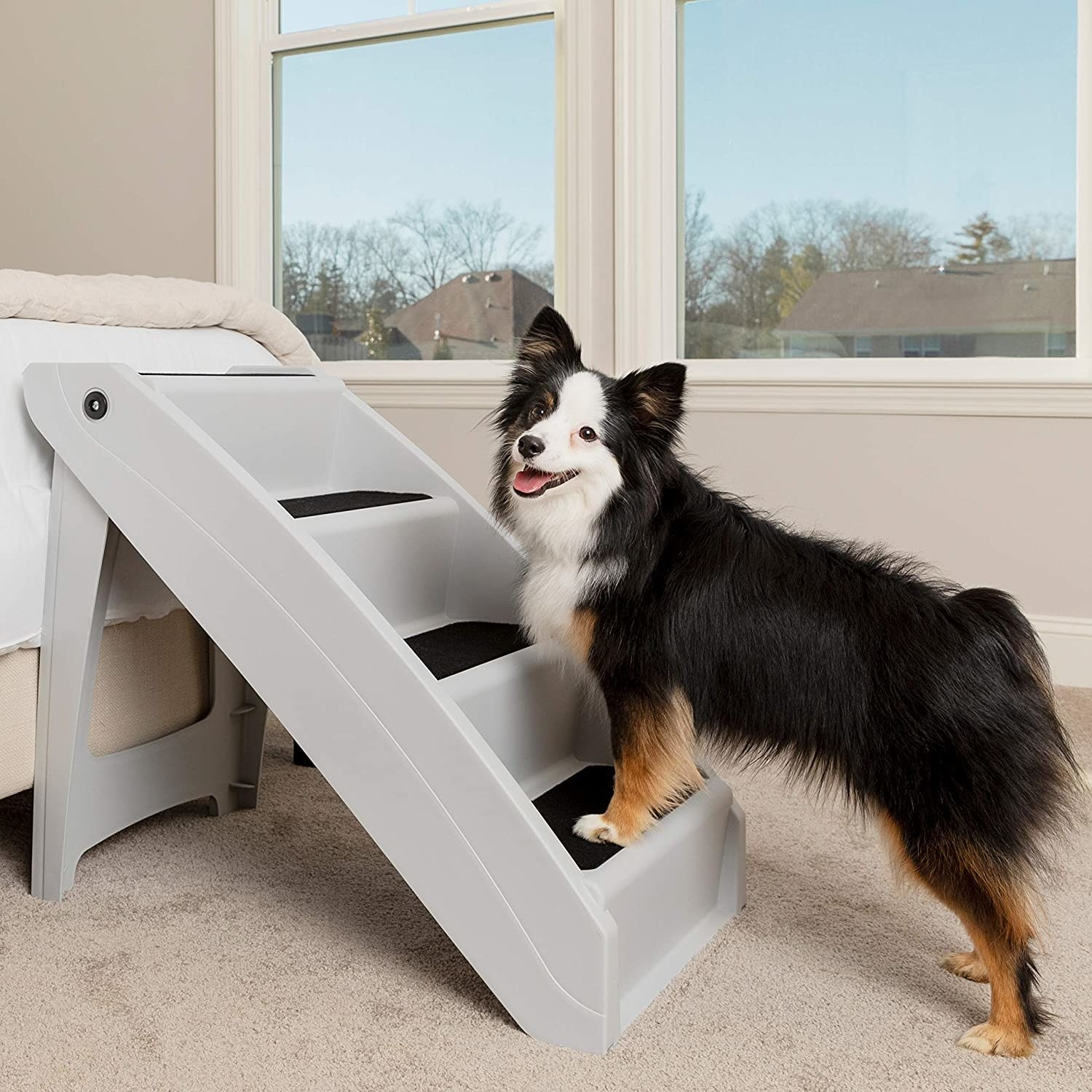 A cute dog using the steps which are placed on the side of a bed