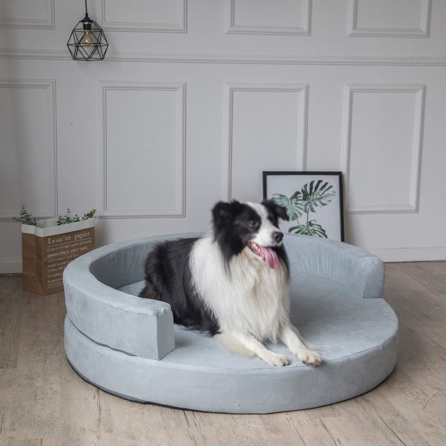 Dog laying in the stylish, circular bed
