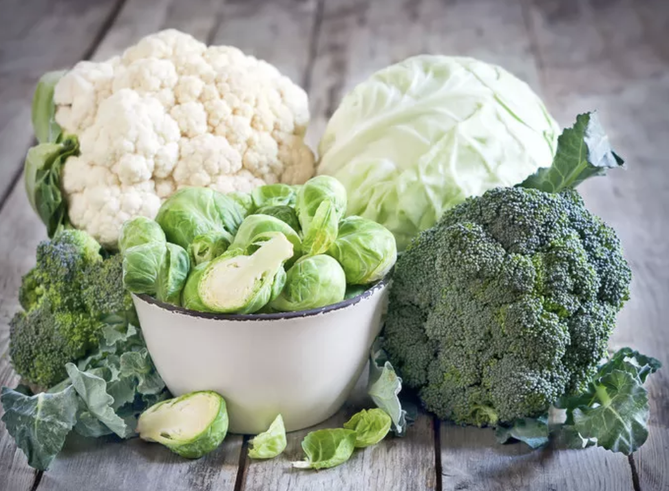 Brussels sprouts, broccoli, cabbage, and cauliflower all next to each other