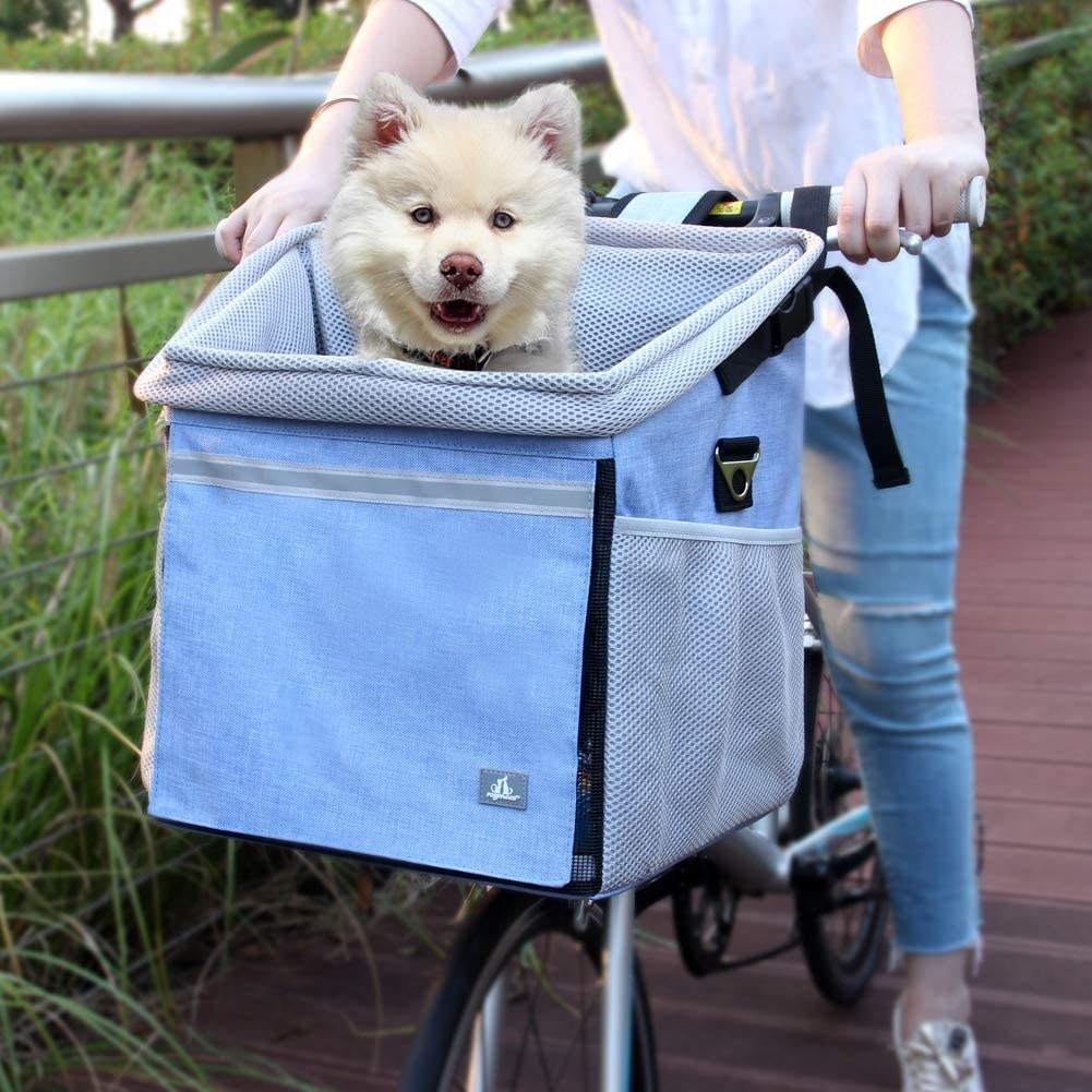 Dog sitting in the large blue fabric bike basket