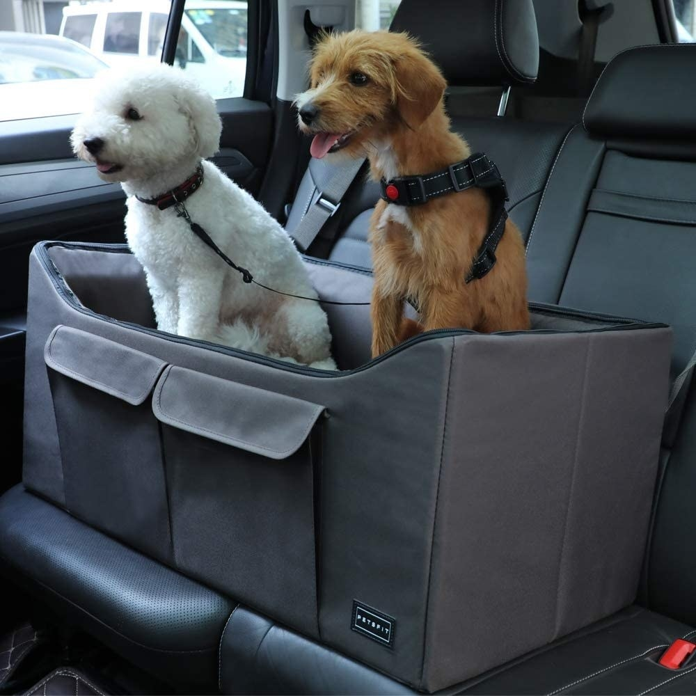 Two dogs sitting in the bed-like car seat