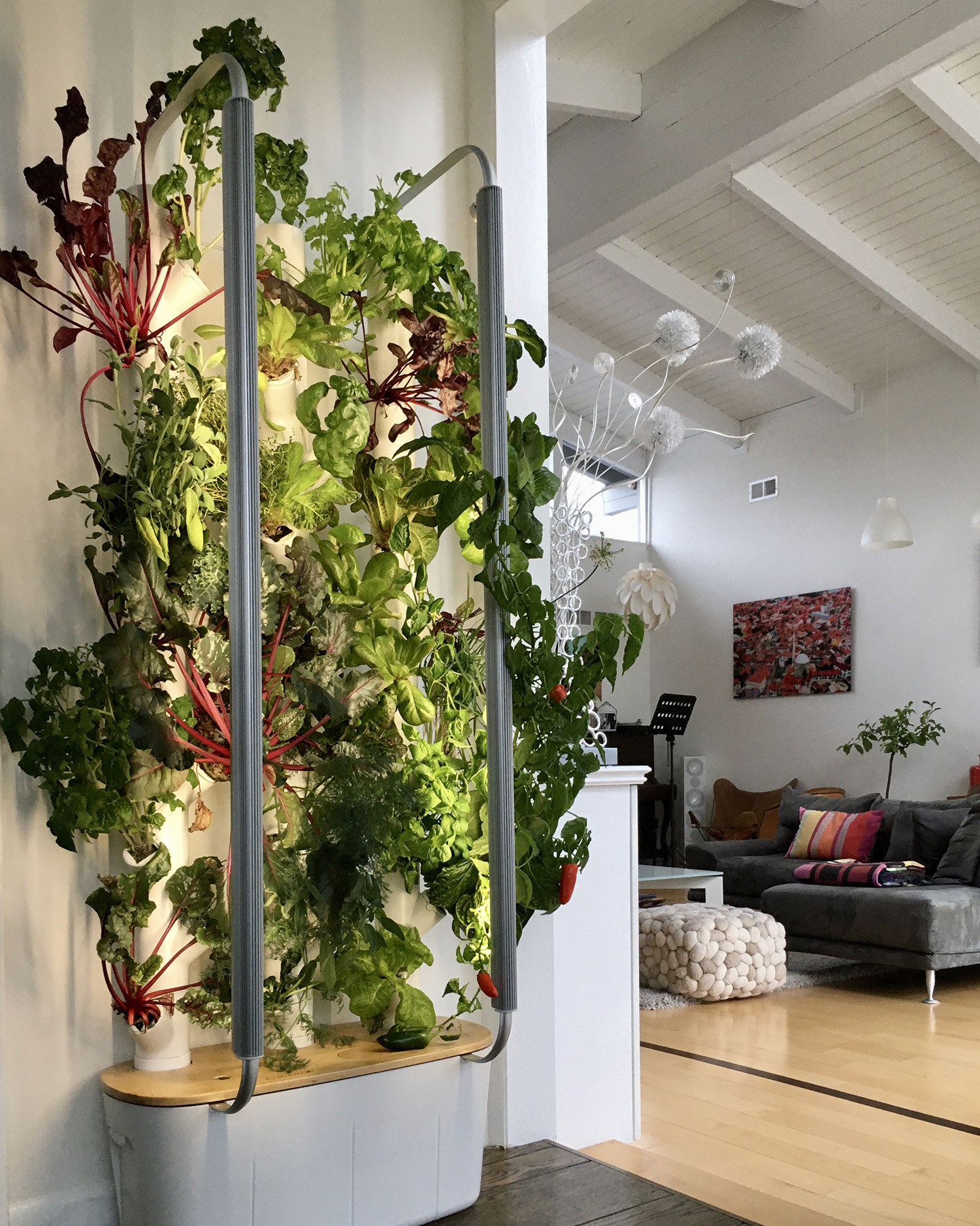 hydroponic device with herbs growing up bars