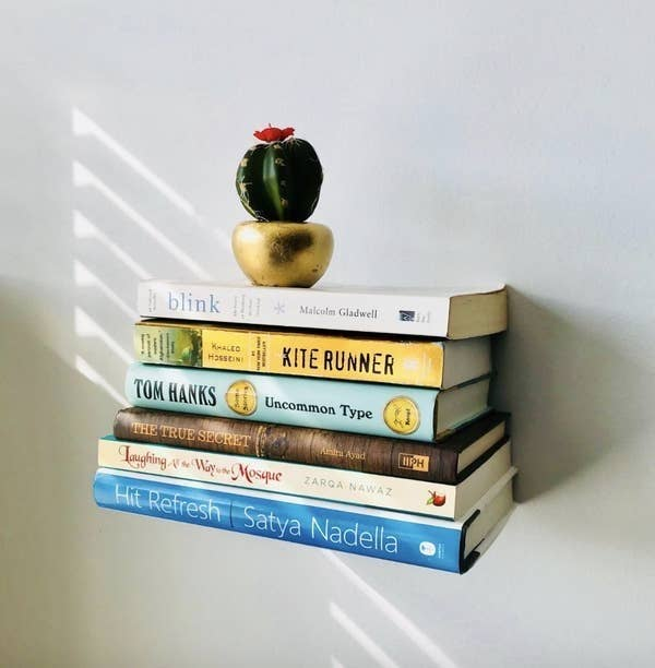 Reviewer photo of six books seemingly floating from the wall with a small cactus on top