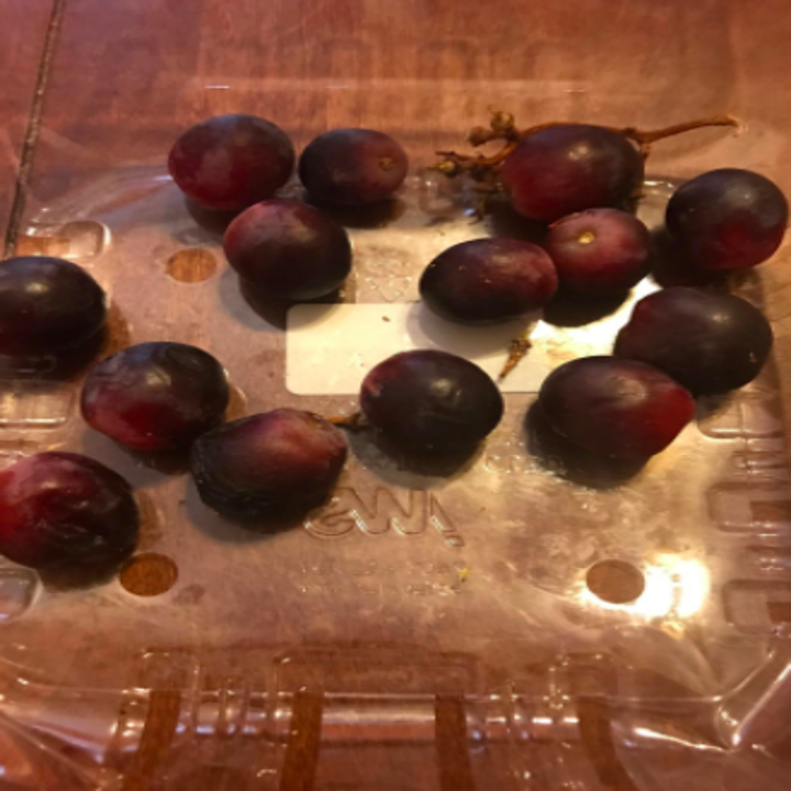 Reviewer photo of old, moldy grapes in a regular plastic container