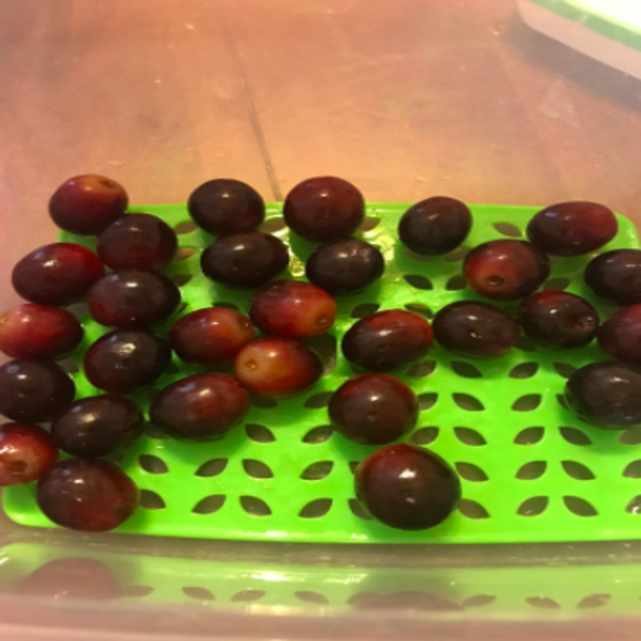 Reviewer photo showing grapes from the same bunch in the RubberMaid FreshWorks container looking ripe and delicious