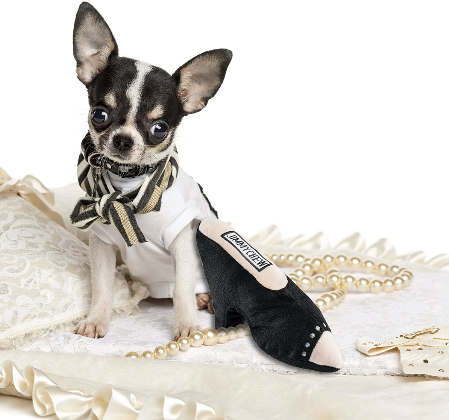 """A chihuahua next to the """"Jimmy Chew"""" heel-shaped plush toy"""