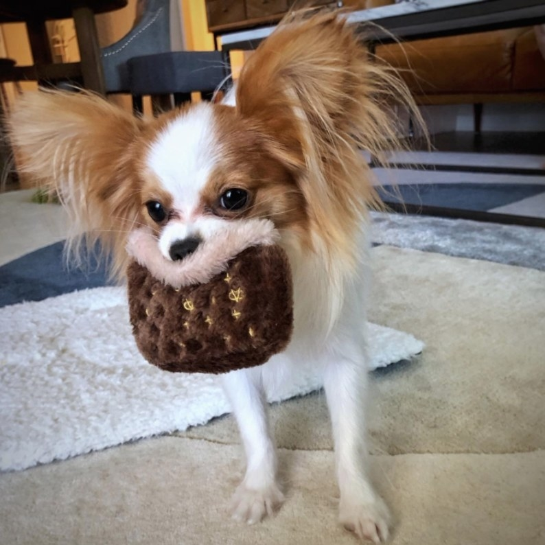 "Reviewer's dog holding the ""Chewy Vuitton"" plush toy that looks like a designer purse"