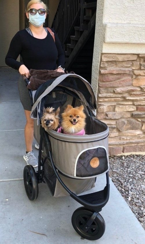 Reviewer pushing the stroller with their two small dogs sitting in it