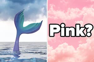 An image of a mermaid tail flipping out above the water next to an image of a pink sky at sunset