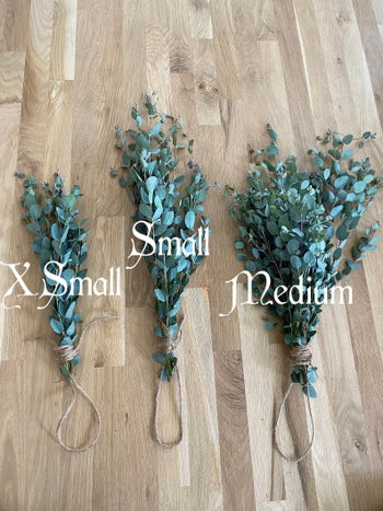 three bunches of eucalyptus leaves bound by a string at the end of their stem and in three different sizes