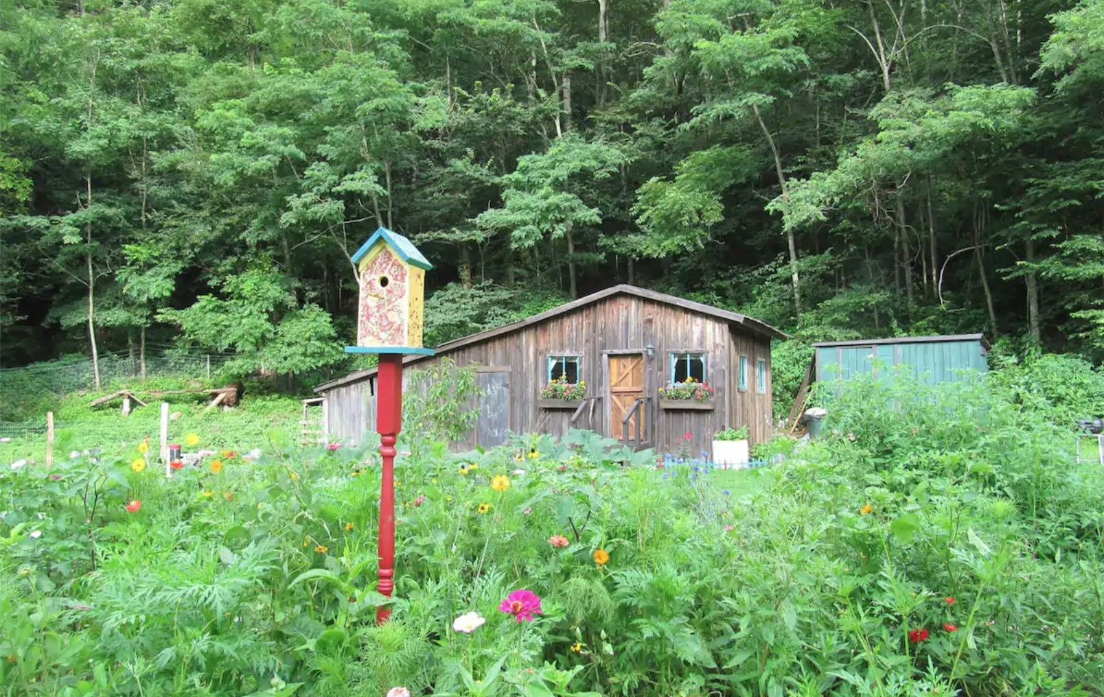 A yellow and red birdhouse stand in the garden in front of a wooden cabin with a slope roof and flowers in the windowsill.