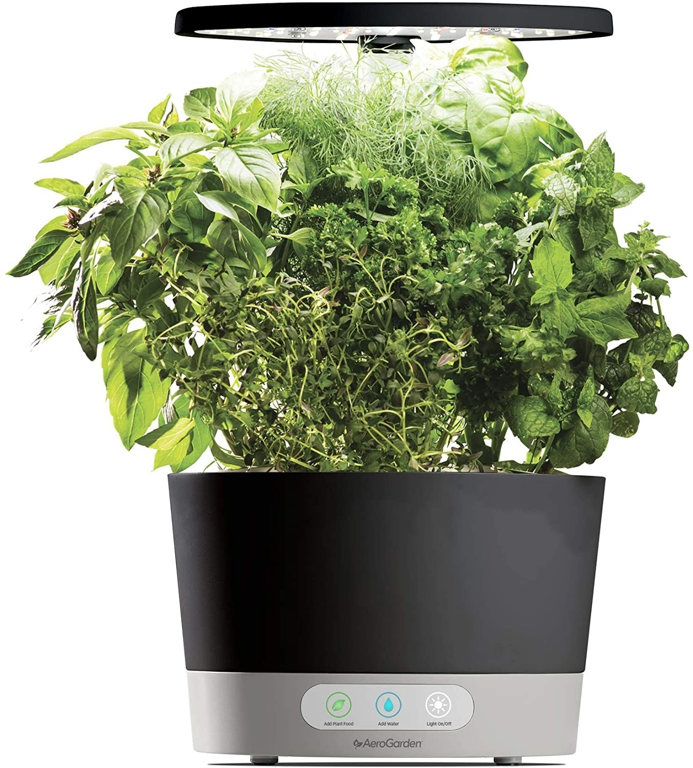 The round black AeroGarden