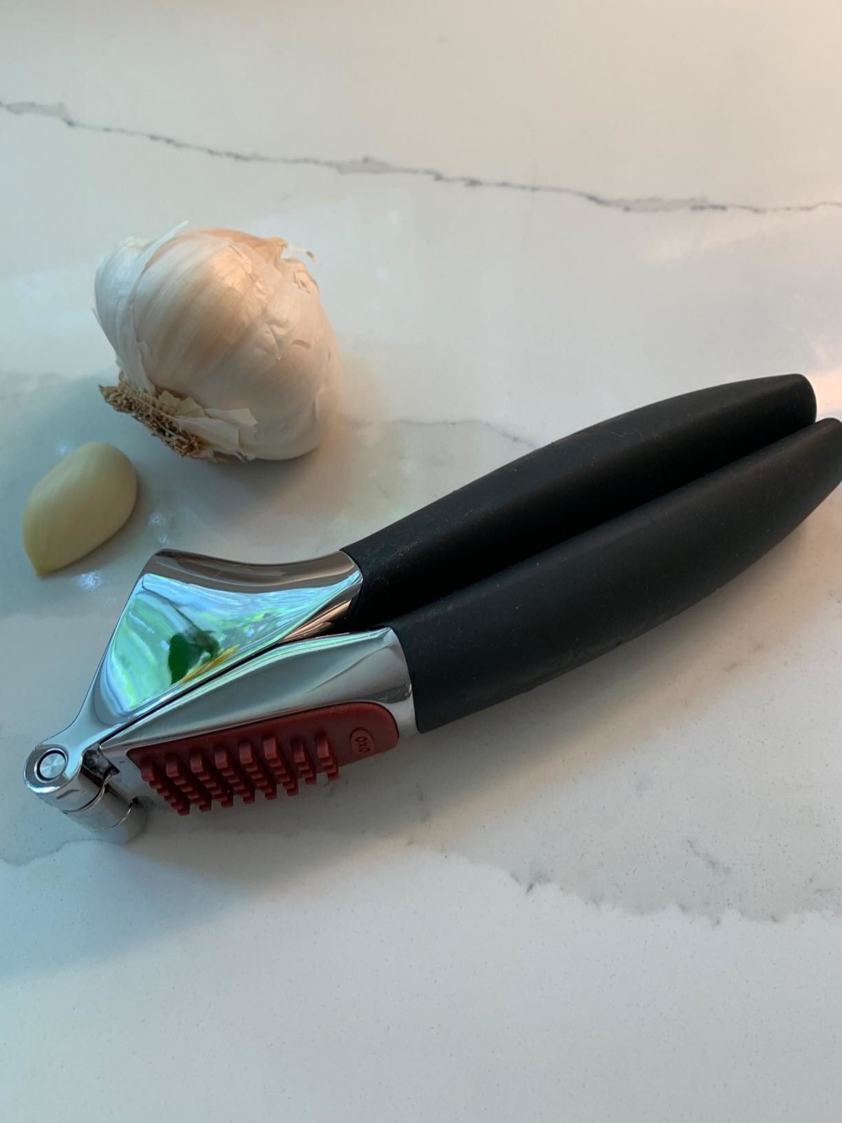 A garlic press with a bulb and clove of garlic next to it.