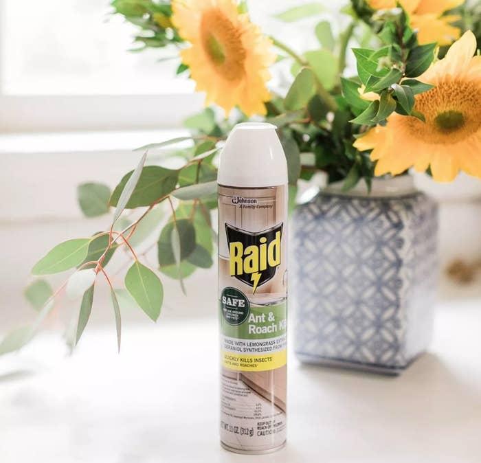 A spray can of Raid Ant & Roach Killer