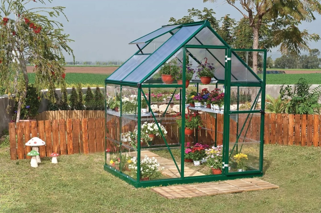 A green framed greenhouse with clear windows and shelving
