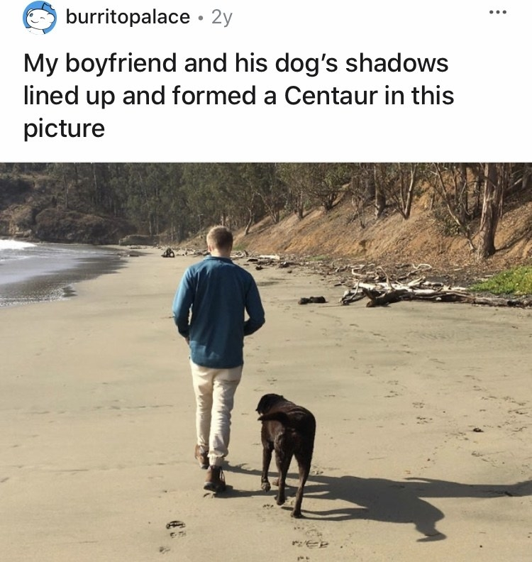 A man and dog are walking on the beach and their shadow looks like a centaur