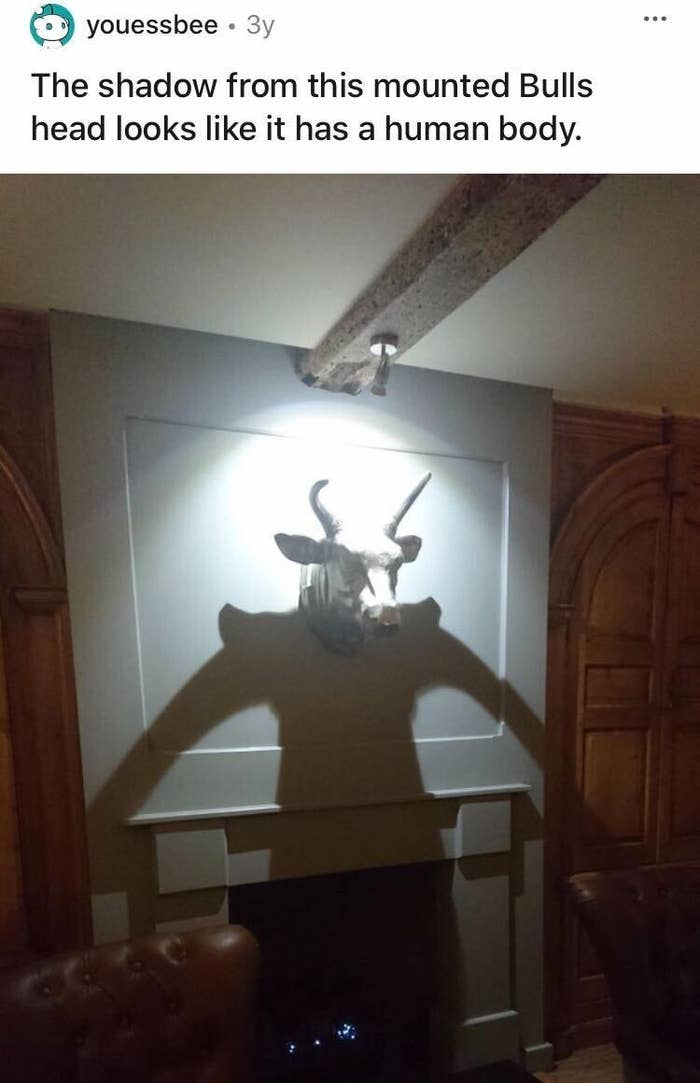 A mounted bull head is casting a shadow making it look like it has a body beneath it