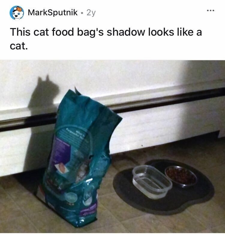 A cat food bag is casting a shadow that looks like a cat