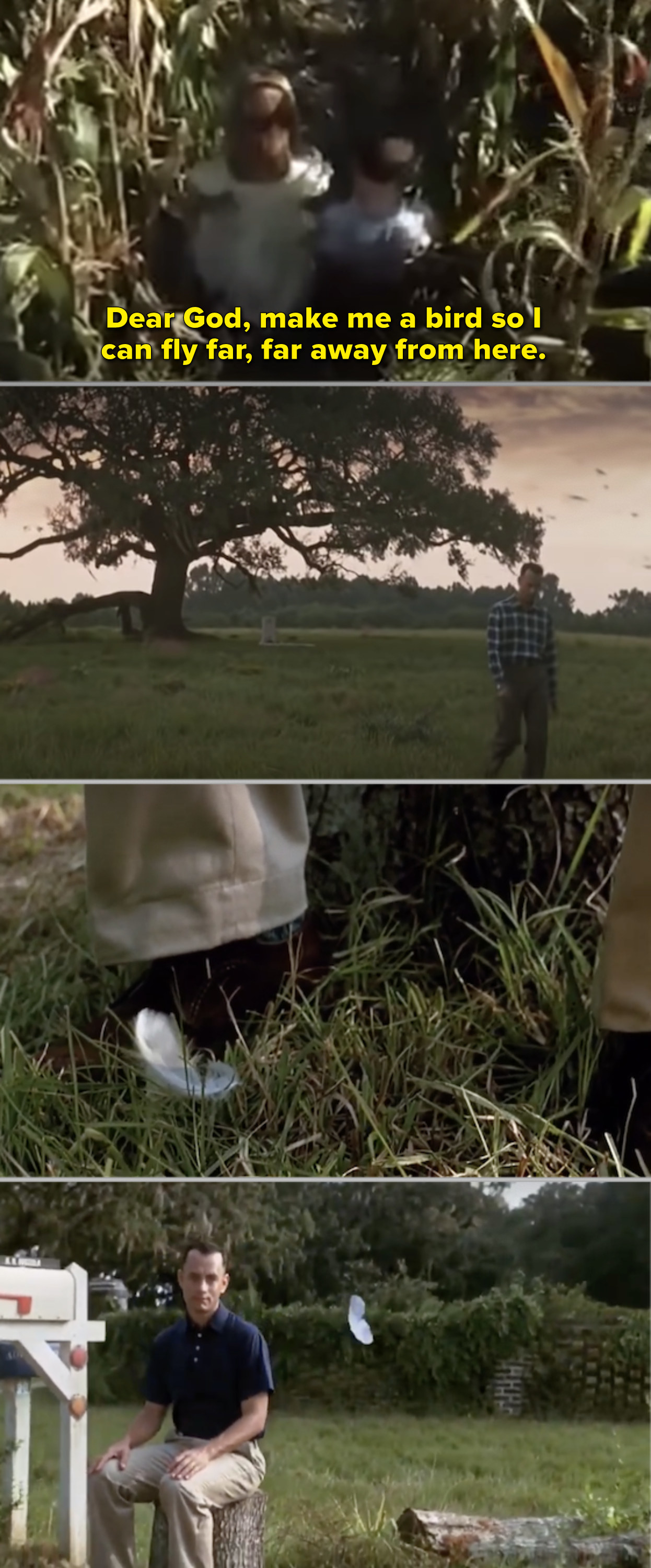 Forrest and Jenny praying together, then Forrest outside Jenny's grave, then a feather by Forrest's shoe