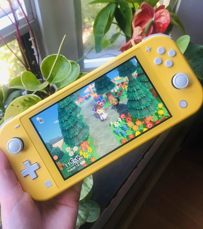 A person holding the Nintendo Switch in front of plants