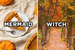 """On the left, a slice of pumpkin pie on a plate with """"mermaid"""" typed on top of the image, and on the right, a forest in autumn with leaves on the ground with """"witch"""" typed on top of the image"""