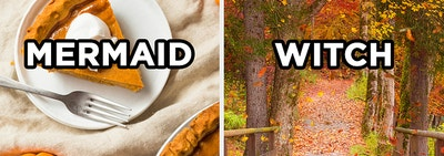 On the left, a slice of pumpkin pie on a plate with
