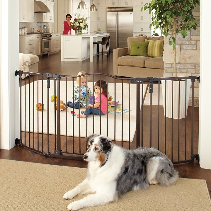 A large dog on one side of the brown, arched gate, which is in the entryway to a living room. Kids are playing on the rug on the other side